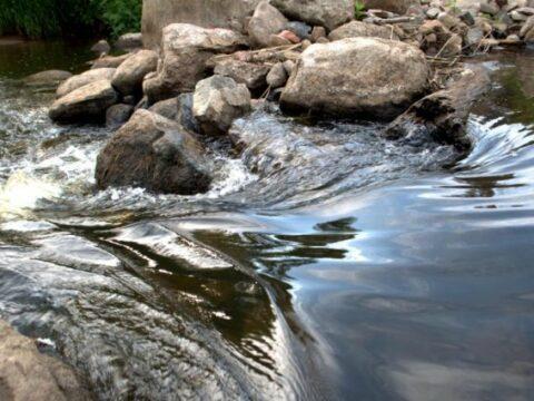 Plauk virvyte :: Stovyklavietė :: Kubilas :: baidarių nuoma Virvytės (Virvyčios) upe